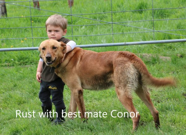 Rust and Conor